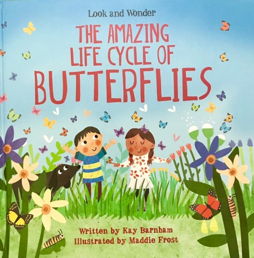 The Amazing Life Cycle of Butterflies by Kay Barnham, illustrated by Maddie Frost